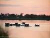 201311_Botswana_127
