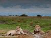 201311_Botswana_32