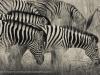 201211_Namibia_1175