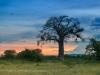 201302_Luangwa_751-Edit