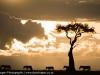 Kenya, Maasai Marawalking in the wild.©David Rogers