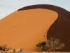 201106_Namibia_2312