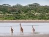 201002_Tanzania_2373