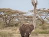 201002_Tanzania_2463