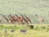 201002_tanzania_828