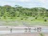 201404_Tanzania202