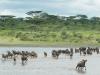 201404_Tanzania264