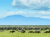 201404_Tanzania413