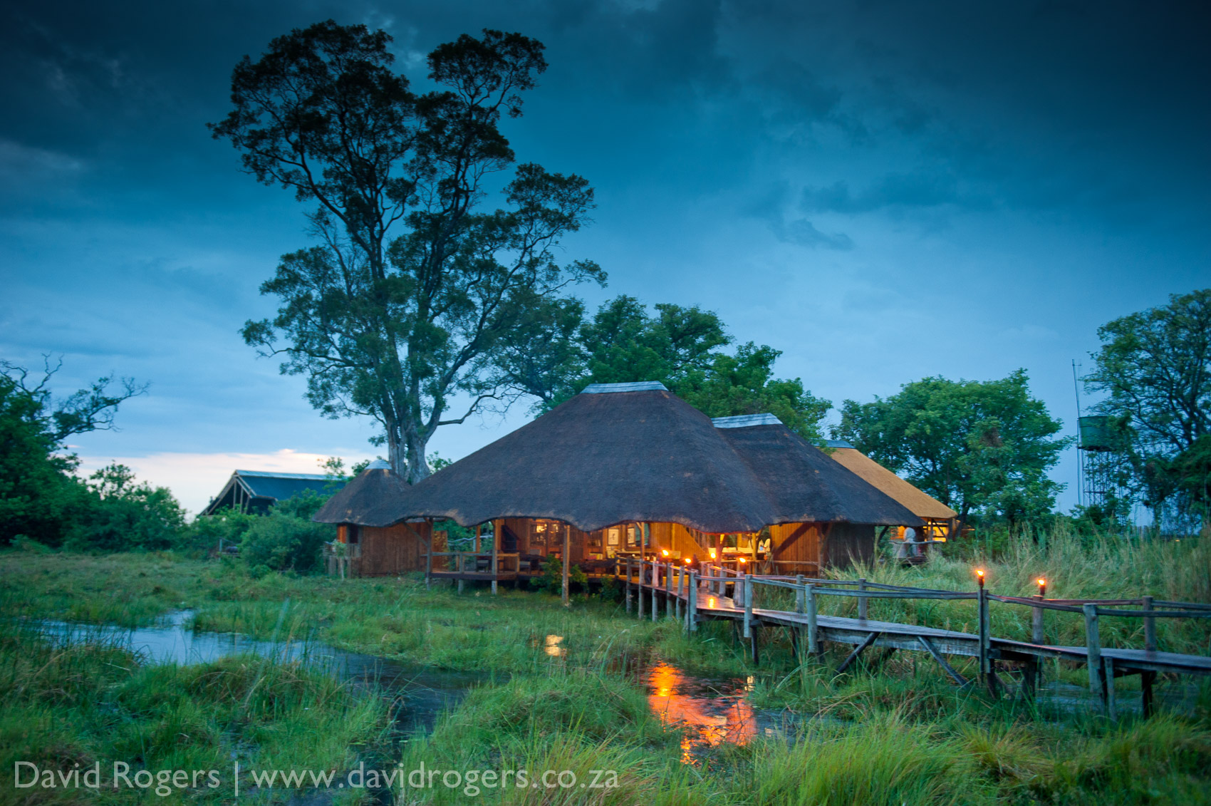 201111_Botswana_1575