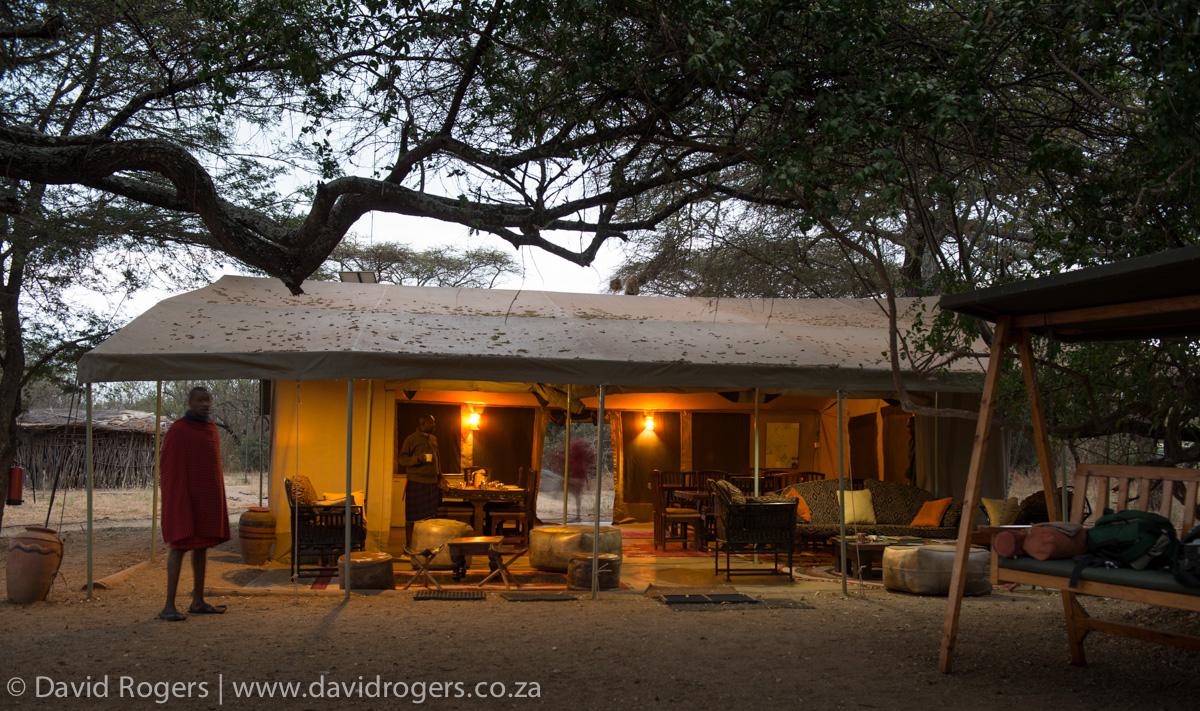 201209_Amboseli_457