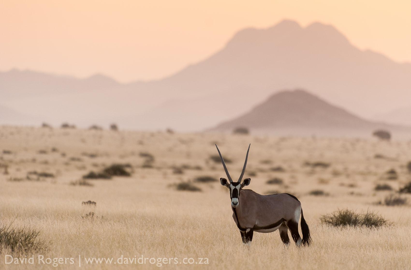 201211_Namibia_759