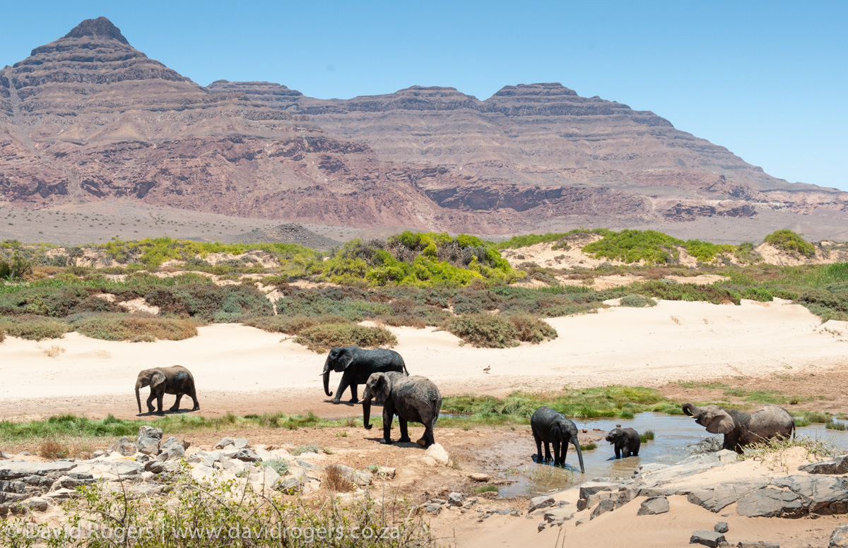 201211_Namibia_947