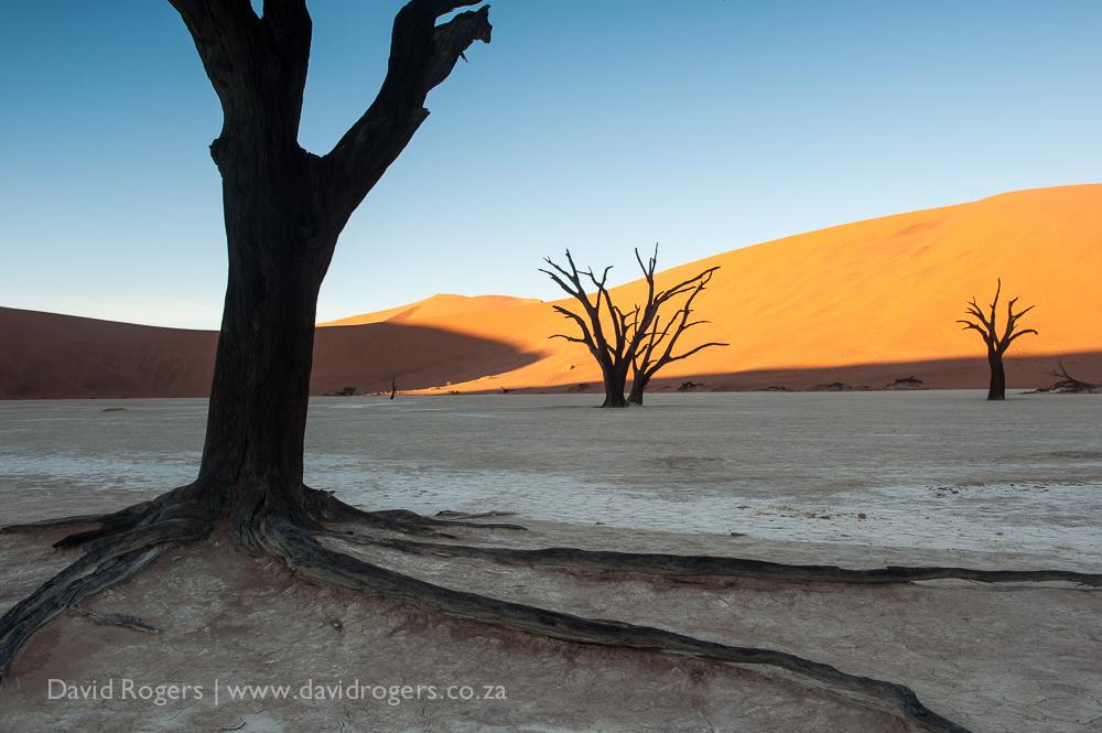 201504_Namibia2_1330
