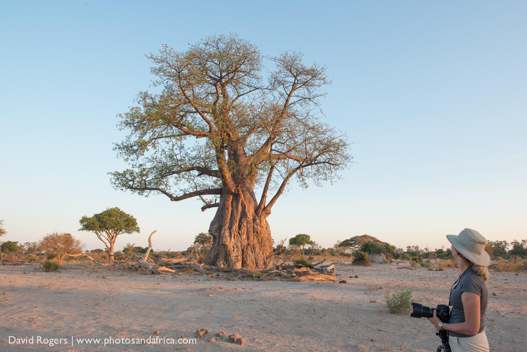 201311_Botswana_108