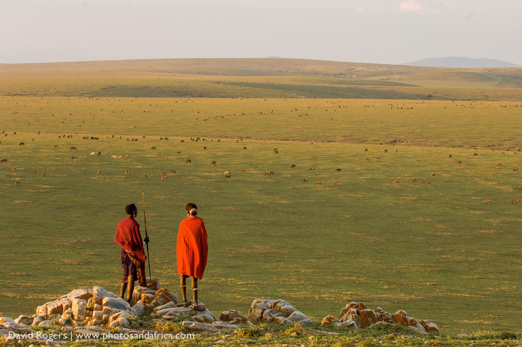 Tanzania, Serengeti, Loliondo region ©David Rogers