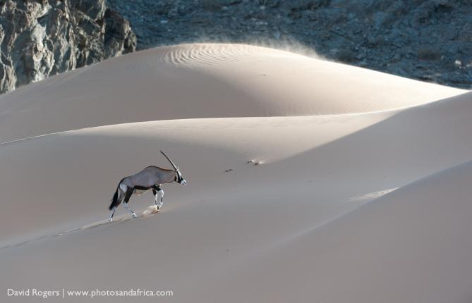 201211_Namibia_1460