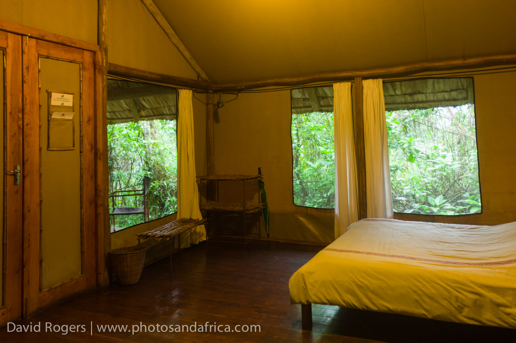 Bwindi Forest Lodge