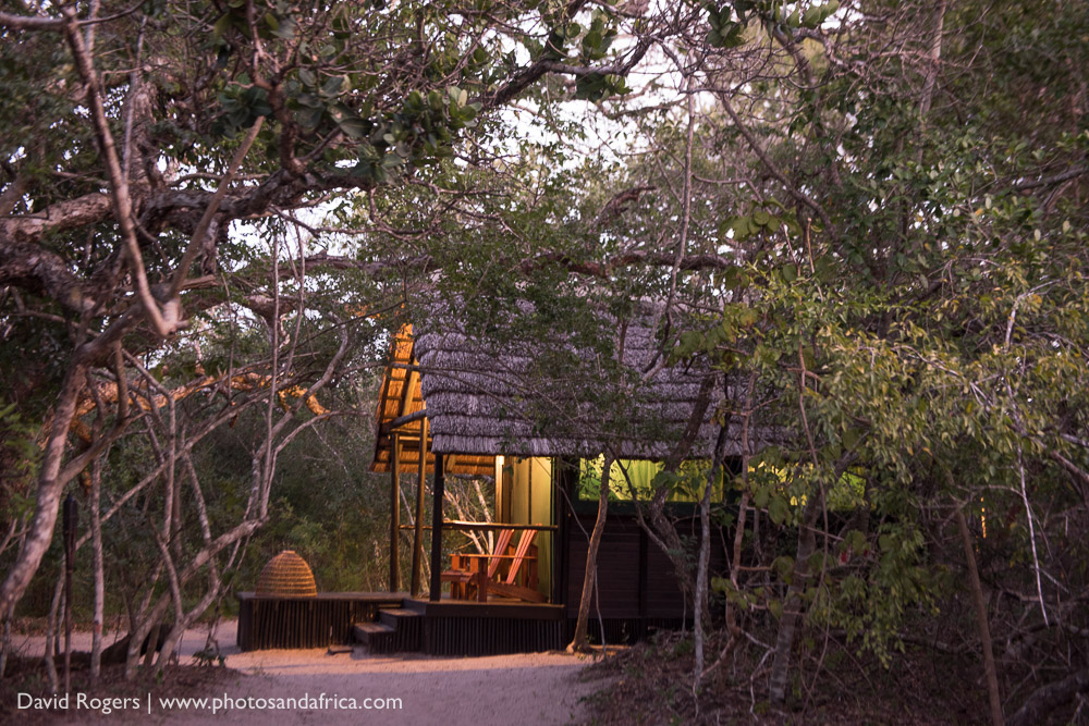 Kosi Forest Camp