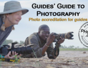 guides guide to photography