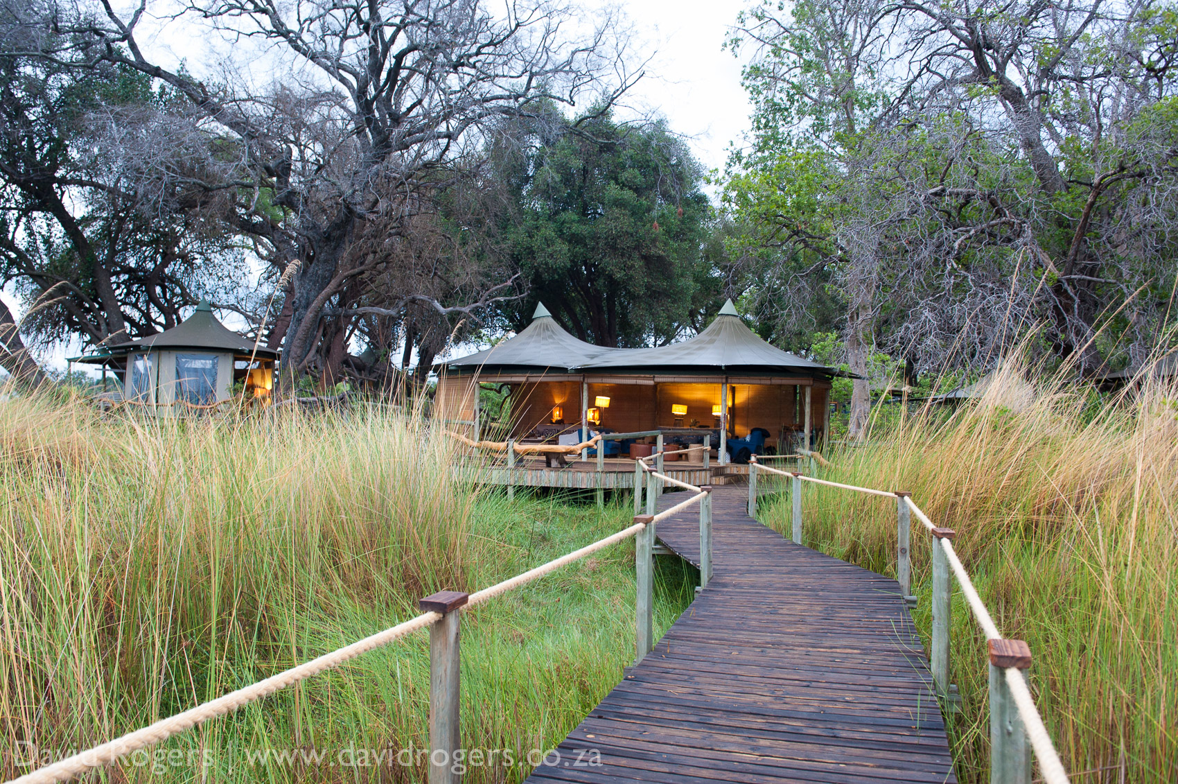 201111_Botswana_2226