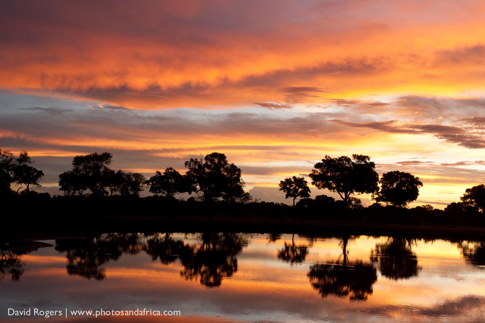 201111_Botswana_2197